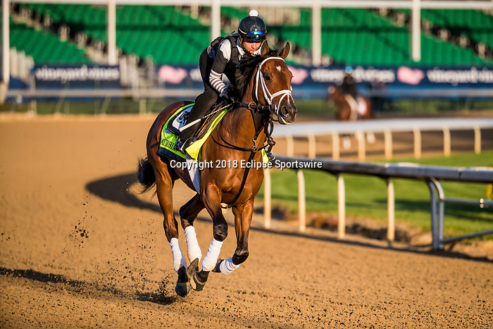 LOUISVILLE, KY - MAY 01: Audible gallops in preparation for the Kentucky Derby at Churchill Downs on May 1, 2018 in Louisville, Kentucky. (Photo by Alex Evers/Eclipse Sportswire/Getty Images)