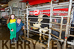 Terry O'Sullivan Scartaglen with the computer which is milking his cows automatically