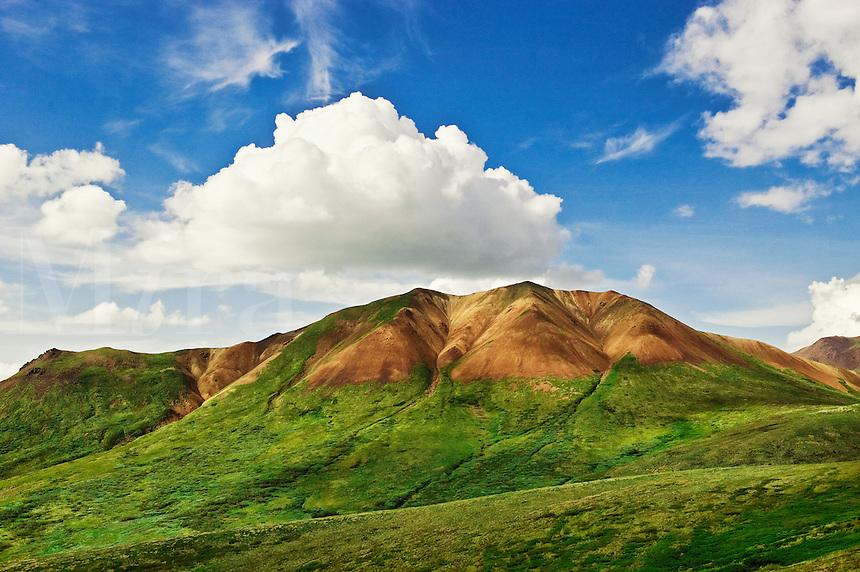 Mountain landscape, Denali National Park, Alaska