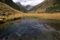 - Valtellina, mountain creek over Pontedilegno  ....- Valtellina, torrente di montagna sopra Pontedilegno  ..