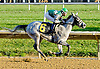 Grate Fire winning at Delaware Park on 10/17/12