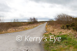 Shronowen Bog road, Ballylongford with sprayed hedgerow.