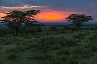 Tanzania.  Sunset over the Northern Serengeti.
