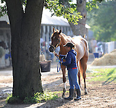 Wynning Ride, contender for 2009 Alabama Stakes