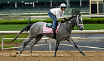 LOUISVILLE, KY -APR 25: My Miss Lillytrains for the Kentucky Oaks at Churchill Downs, Louisville, Kentucky. (Photo by Mary M. Meek/Eclipse Sportswire/Getty Images)
