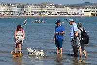 BNPS.co.uk (01202 558833)<br /> Pic: Graham Hunt/BNPS<br /> Date: 7th September 2021.<br /> <br /> Sunbathers flock to the beach to enjoy the scorching hot sunshine at the seaside resort of Weymouth in Dorset.<br /> <br /> Beachgoers paddle in the sea with their dogs to cool off.