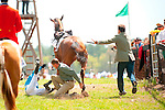 2  April, 2011:  Xiavier Aizpuru goes for a wild ride on Todd Mckenna trained CLASS CENTURY while leaving the paddock for the Camden Plate Maiden Hurdle race. Fortunately the race ended for the pair by securing a win for owner Mrs. Timothy J Gardner.