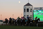 LOUISVILLE, KY - NOV 12: The field for the Commonwealth Turf Cup the first time down the stretch under the moon at Churchill Downs, Louisville, Kentucky. (Photo by Mary M. Meek/Eclipse Sportswire/Getty Images)