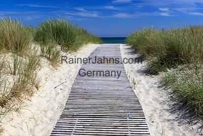 Denmark, Jutland, Ålbæk:Path through sand dunes to beach | Daenemark, Juetland, Aalbæk: zum Schutz der Duenen (Kuestenschutz) sollte man die angelegten Wege durch die Duenen benutzen
