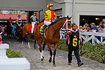 February 21, 2015: Angela Renee with Rafael Bejarano up in the Rachel Alexandra Stakes at the New Orleans Fairgrounds Risen Star Stakes Day. Steve Dalmado/ESW/CSM