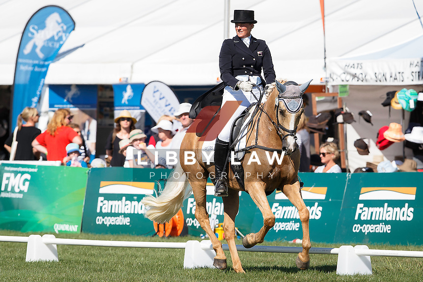 NZL-Donna Edwards-Smith (MR HOKEY POKEY) INTERIM-6TH: LAND ROVER CIC3*: 2016 NZL-Horse of the Year Show, Hawkes Bay Showgrounds, Hastings (Thursday 3 March) CREDIT: Libby Law COPYRIGHT: LIBBY LAW PHOTOGRAPHY