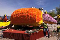 MEDELLIN -COLOMBIA-01-AGOSTO-2014. Con un homenaje a nuestra naturaleza con gigantescos animales de flores como este armadillo en La Plaza Mayor  se da incio a la 57 edicion de la Feria de Las Flores de Medellin  ./  With a tribute to our animal nature with giant armadillo flowers like this depiction is given to the 57th edition of the Feria de Las Flores Medellin.  Photo:VizzorImage / Luis Rios / Stringer