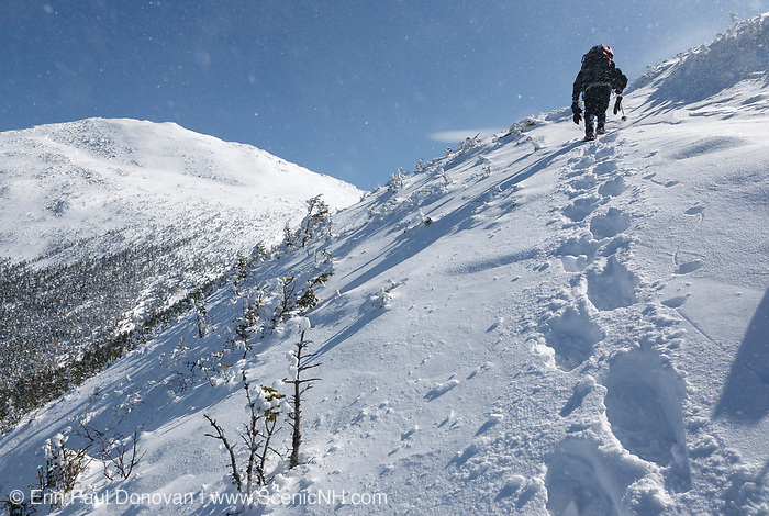 A winter hiker ascending the Air Line Trail in the White Mountains, New Hampshire during the winter months. Blowing snow can be seen in the photo.