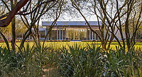 Sunnylands garden; lawn ringed with Cercidium or Parkinsonia 'Desert Museum' Palo Verde trees and cactus and Agave;