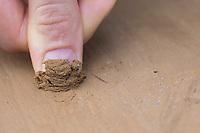 Wildbienen-Nisthilfe aus Lehm, Baulehm, Lehmputz, Lehmwand. Schritt 4: Fingernagelprobe - das Lehm-Sand-Gemisch darf nicht zu hart sein und muss sich noch mit dem Fingernagel leicht abkratzen lassen. Wildbienen-Nisthilfen, Wildbienen-Nisthilfe selbermachen, selber machen, Wildbienenhotel, Insektenhotel, Wildbienen-Hotel, Insekten-Hotel