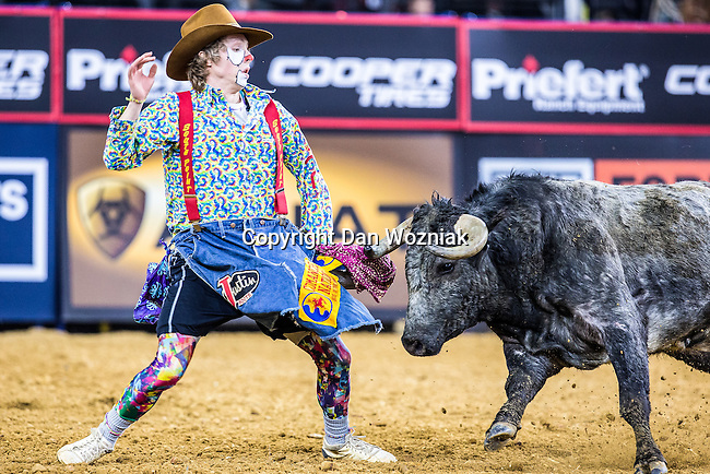 Professional Bull Fighters in action during the Choctaw Casino Iron Cowboy bull riding event, at the AT & T stadium in Arlington, Texas.