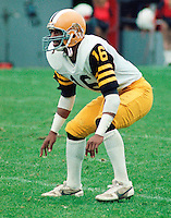 Howard Fields HamiltonTiger Cats 1983. Copyright photograph Scott Grant