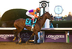 November 7, 2020 : Authentic, ridden by John Velazquez, wins the Longines Classic on Breeders' Cup Championship Saturday at Keeneland Race Course in Lexington, Kentucky on November 7, 2020. Bill Denver/Breeders' Cup/Eclipse Sportswire/CSM