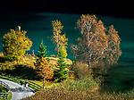 Austria, Tyrol, near Scheffau am Wilden Kaiser: autumn walk along lake Hintersteiner See | Oesterreich, Tirol, bei Scheffau am Wilden Kaiser: Herbstspaziergang am Hintersteiner See