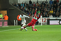 League Cup Quarter Final, Swansea V Middlesbrough, Liberty Stadium, 12/12/12<br /> Picture by: Ben Wyeth<br /> Pictured: Nathan Dyer (L) and Scott McDonald (R).<br /> Athena Picture Agency