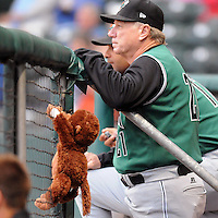 The Augusta Greenjackets have a stuffed mascot monkey named Norm. He was picked up by outfielder Dom Duggan as a good luck charm after the team lost 11 of 13 to begin the season. The team went on to win the next six of eight, and though they fell on another rough patch, the monkey stays, largely at Duggan's request. He's become a pseudo-celebrity, having been featured in the Augusta Chronicle and on local television station WJBF, our ABC affiliate, says Eric Little, the GreenJackets' media relations staffer. He is shown here with manager Dave Machemer (21).