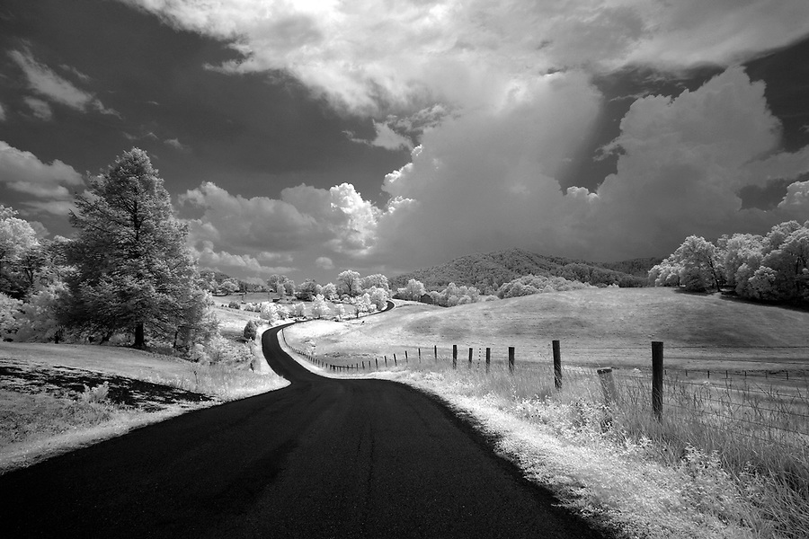 Long winding road in Greene County, VA.