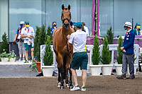 AUS-Mary Hanna's Calanta is presented during the 1st Horse Inspection for the Dressage at the Equestrian Park. Tokyo 2020 Olympic Games. Friday 23 July 2021. Copyright Photo: Libby Law Photography