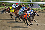 August 29, 2015 : Unbridled Forever, ridden by John Velazquez, wins the Ballerina Stakes on Travers Stakes Day at Saratoga Race Course in Saratoga Springs, NY. Scott Serio/ESW/CSM