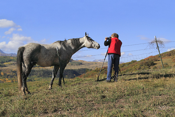 Older woman photographing horse in southwest Colorado.