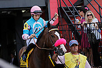 May 16, 2014: Miss Behaviour, Sheldon Russell up, wins the Miss Preakness Stakes at Pimlico Race Course in Baltimore, MD. ©Joan Fairman Kanes/ESW/CSM