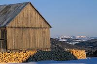 Amérique/Amérique du Nord/Canada/Quebec/Les Eboulements : Grange et sommets des Laurentides
