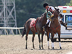 September 20, 2014: Scenes from Pennsylvania Derby Day at Parx Racing in Bensalem, PA: Regal Salutation is rounded up by an outrider after race 1. Joan Fairman Kanes/ESW/CSM