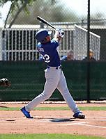 Marcus Chiu - Los Angeles Dodgers 2018 spring training (Bill Mitchell)