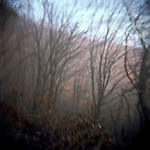 Fog at  the viewing point. Abkhazia. Gagra town. 2011