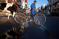 A man walks with his bike and a cow along a street. Buzescu is known for it's ultra-wealthy Roma and their bizarre mansions that line the main street. The Roma of Buzescu are part of the Kalderash clan and are known for being coppersmiths and dealing with metal scraps. After the fall of the communist regime in the late 80's, they stripped old factories of their metals and some made a small fortune re-selling them. They are also known for making cazane, copper stills that produce alcohol such as palinka, a plum brandy.