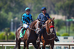 """September 26, 2015: Hollywood Don in the post parade for the Breeders' Cup """"Win and You're In"""" FrontRunner Stakes at Santa Anita Park in Arcadia, California. Zoe Metz/ESW/CSM"""