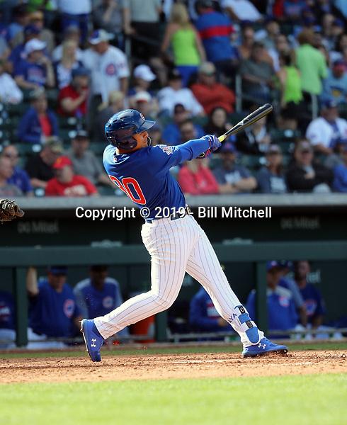 Miguel Amaya - Chicago Cubs 2019 spring training (Bill Mitchell)