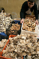 Wild mushrooms for sale in a market in Fener, Istanbul, Turkey
