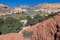 Red Rock Canyon, Nevada.  Gray Limestone Rock of La Madre Mountain (background) Rises up over Younger Light Sandstone in The Keystone Thrust.
