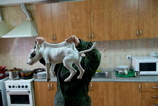 Tanya, Scharfschuetzin der pro-russischen Separatisten, Portrait, Donezk, Ukraine, 10.2014,  19-years old female sniper of the DNR (Donetsk People's Republic) Army with her dog Bonie at the impovised DNR military base o the suburb of Donetsk.  ***HIGHRES AUF ANFRAGE*** ***VOE NUR NACH RUECKSPRACHE***