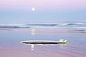 Surfboard and full moon Australia