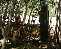 Foot soldiers from the Wardak Mobile Patrol Unit take refuge in the shade to pray