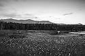 The length of Franconia Ridge standing over Lonesome Lake and rendered in black and white.
