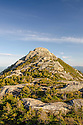 The rough and tumble, boulder jumble, summit of Mt. Chocorua from up close and personal.