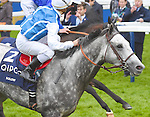 Solow (no. 2), ridden by Maxime Guyon and trained by Frederic Head, wins the group 1 Queen Elizabeth II Stakes for three year olds and upward on October 17, 2015 at Ascot Racecourse in Ascot, Berkshire, United Kingdom.  (Bob Mayberger/Eclipse Sportswire)