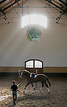 Foto: VidiPhoto..TOPOLCIANKY - In het Slowaakse Topolcianky bevindt zich de meest beroemde stoeterij van Europa. Bij de eeuwenoude fokkerij wordt met vier soorten beroemde paarden gefokt: Arabieren, Lippizaner, Slowaakse volbloeden en Huculpaarden (Roemeense bergpaarden). In totaal bezit de stoeterij 600 paarden. Paardenfokkers uit de hele wereld halen hun dieren uit Slowakije.