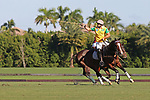 WELLINGTON, FL - NOVEMBER 25:  Scenes from USPA International Cup, Caio Mello, Brazil. Team USA defeats Team Brazil 9 - 7 in the final of the USPA International Cup at the Grand Champions Polo Club, on November 25, 2017 in Wellington, Florida. (Photo by Liz Lamont/Eclipse Sportswire/Getty Images)