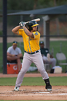 AZL Athletics designated hitter Gio Dingcong (26) at bat during an Arizona League game against the AZL Athletics at Camelback Ranch on July 15, 2018 in Glendale, Arizona. The AZL White Sox defeated the AZL Athletics 2-1. (Zachary Lucy/Four Seam Images)