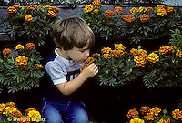 FA01-029z  Child smelling marigolds