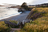 Public access stairs to Pebble Beach at The Sea Ranch showing homes on coastal bluff.